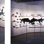 """""""Konvergenz von Delfin, Hai und Ichthyosaurier""""; Ausstellungsfotos1"""