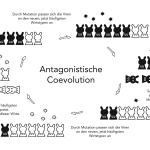 """Grafik """"Antagonistische Coevolution"""""""