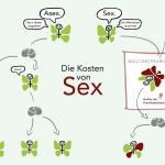 """Grafik """"Die Kosten von Sex"""""""