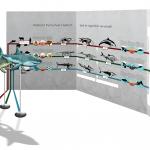 """""""Konvergenz von Delfin, Hai und Ichthyosaurier""""; Aufbau-Simulation 2"""